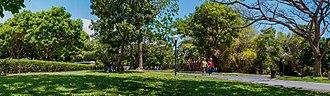 Valencia, Carabobo - Negra Hipolita Park in Valencia city.