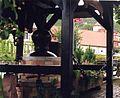 Neuweier Alambic July 2000.jpg