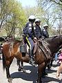 New York City Mounted Police.JPG