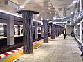 New hibiya line Ueno stn platforms - Jan 20 2018.jpg