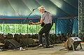 Nick Lowe at Ealing Blues Festival (48364537236).jpg