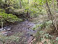 Nickajack Creek.jpg