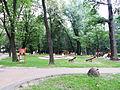 Nisko - park miejski-1.jpg