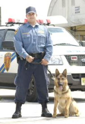 New Jersey Transit Police Department - A New Jersey Transit Police K-9 officer and his dog.