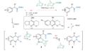 Norbornene-mediated meta-C-H activation mechanism.png