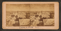 North from St. Michael's, from Robert N. Dennis collection of stereoscopic views.png