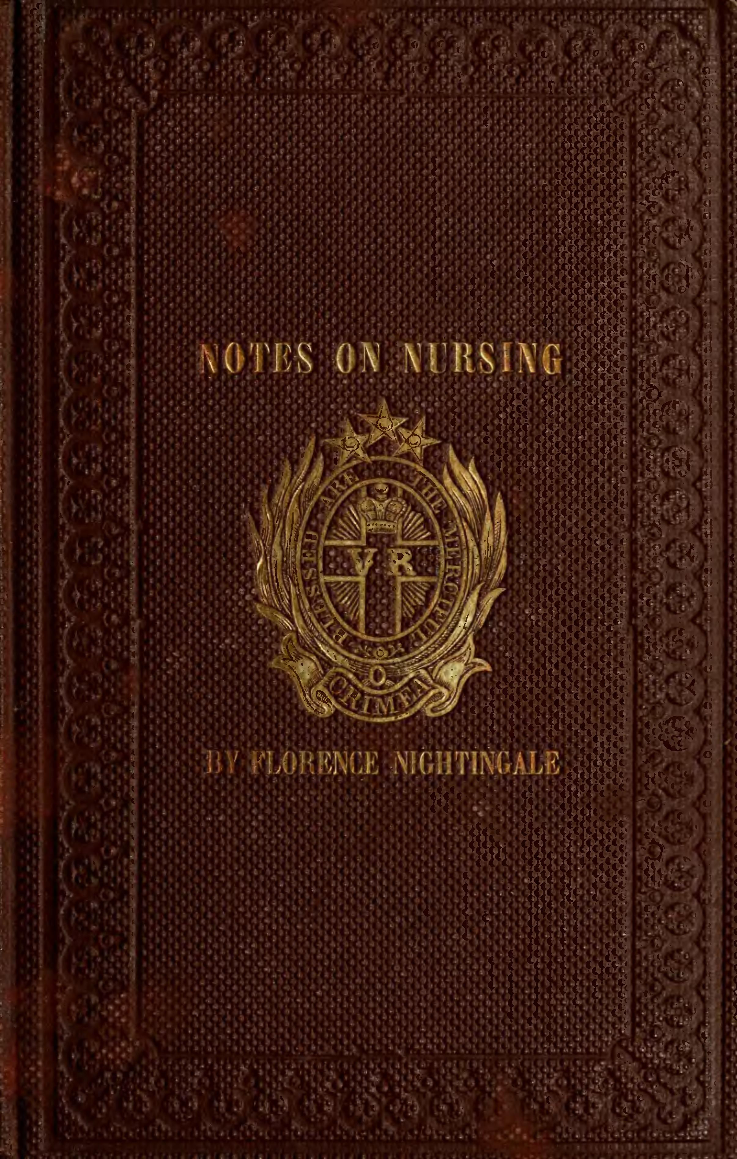 Notas sobre Enfermería. (otro de sus vidas)