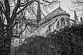 Notre Dame (30479693627).jpg