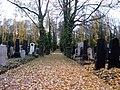 Nový židovský hřbitov (5).jpg