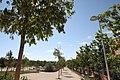 Nueva zona estancial en el parque forestal Fuente Carrantona (03).jpg