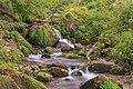 Oberried (Breisgau) - der Buselbach unterhalb des Steinwasen-Wasserfall Bild 1.jpg