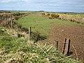 Odd-shaped field near A39 - geograph.org.uk - 738436.jpg