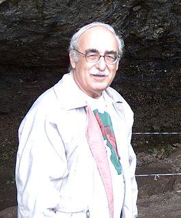 Israeli archaeologist