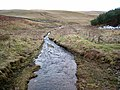 One of the headwaters of the Cottonshope Burn - geograph.org.uk - 658006.jpg