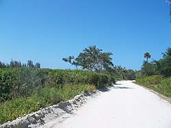 Orchid FL Jungle Trail02.jpg