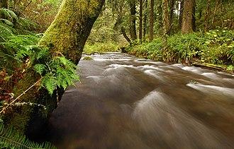 Rock Creek Wilderness - Rock Creek