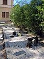 Orto botanico, fi, giardino giapponese 02 zen.JPG