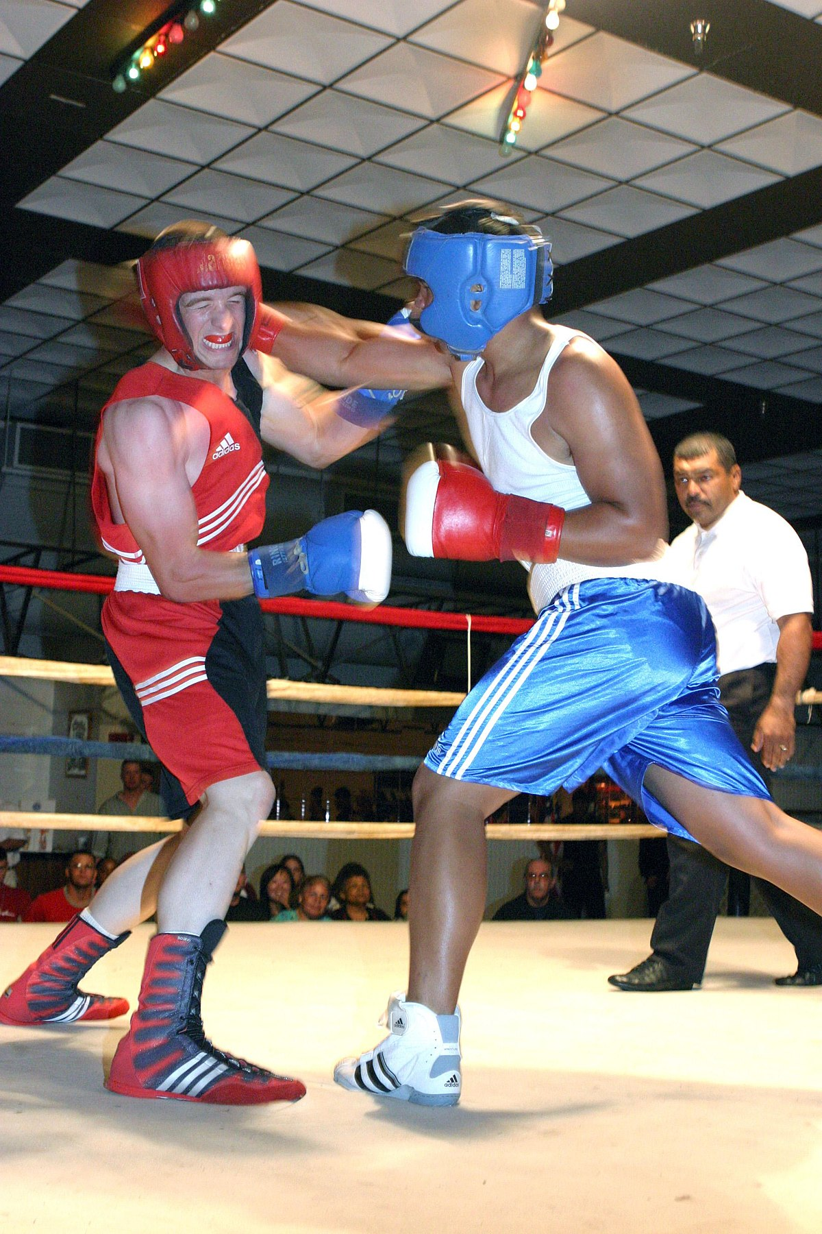 professional Boxing amateur and weight classes