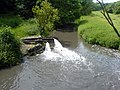Outflow into River Meden - geograph.org.uk - 468411.jpg
