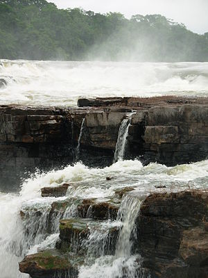 Juruena National Park - Image: PN Ju 0585