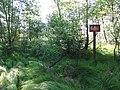 POL Chybie Rezerwat przyrody Rotuz 1.JPG
