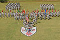 Pacific Theater's senior Army logistics command changes leadership 140723-A-ET326-260.jpg