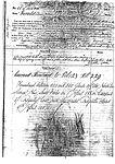 Paddle Steamer 1855 - 1884 Herald Sydney Ship Registration.jpg