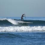 Paddle surfing 3 2008.jpg