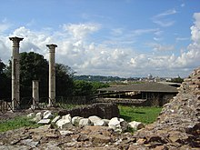 Palatine Hill columns with St Peters.jpg
