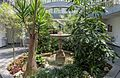 Palma garden 1.jpg