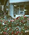 Palmemord mars 1986c.jpg