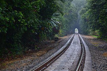 Panama Canal Railway in 2015.jpg