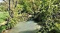 Parco fluviale del Nera - Stralcio del fiume presso Ferentillo.jpg