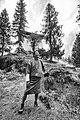 Paro, Paro, Bhutan (8026008267).jpg