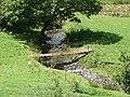 Pasture in Cwm Nant Carfan - geograph.org.uk - 520681.jpg