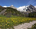 Path and Massif du Mont-Blanc.jpg