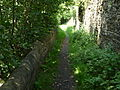Path in Carleton 09.jpg