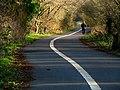 Path near Newforge Lane - geograph.org.uk - 1136680.jpg