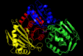Phosphoglucomutase Four Domains.png