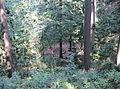 Pikec Valley Mass Grave 1.JPG
