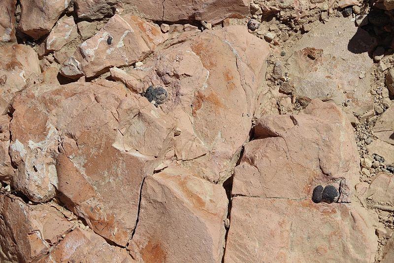 סלעים מטמורפיים יחודיים רק לישראל