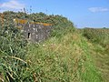 Pill Box, Saltfleet - Theddlethorpe Dunes - geograph.org.uk - 549310.jpg
