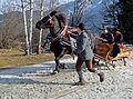 Pinzgauer Brauchtums- und Trachtenschlittenfest, 2. Februar 2014, 8.jpg