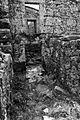 Pitoes agosto 2012-7 (8010100316).jpg