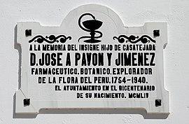 José Pavón