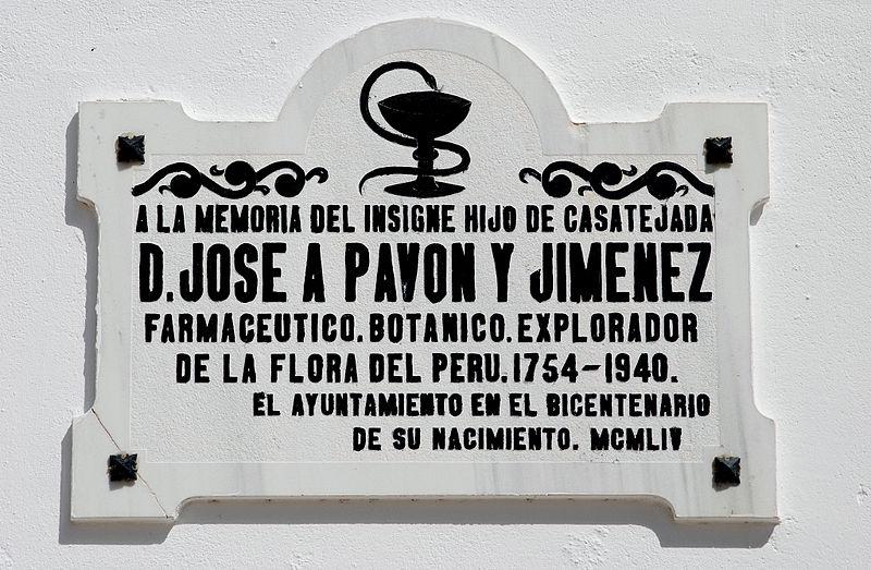File:Placa homenaje a José Antonio Pavón (Casatejada, Cáceres).jpg