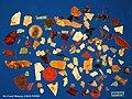 Plastic found inside one dead Fulmar (8080499092).jpg
