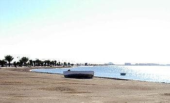 Playalamota06