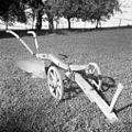 Plug z železno desko, Ržišče 1956 (2).jpg