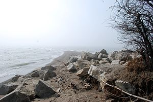 Point Pelee National Park - Image: Point Pelee April 2008